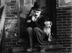 dog's life 1918