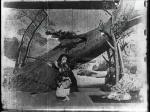 Momijigari 1899 (3)